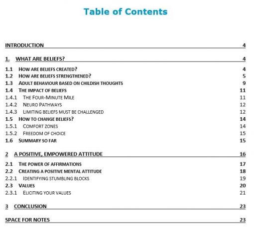 Values & Beliefs - TOC - Professional Development - Personal Development - Leadership Skills - PDF Download